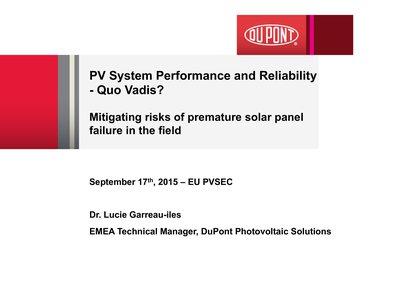 Mitigating risks of premature solar panel failure in the field